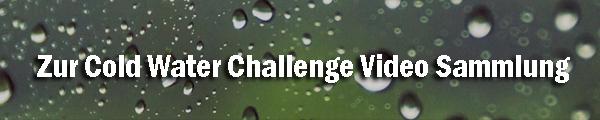 Cold Water Challenge Mondsee