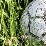 mondsee_fussballingraß_beitragsbild