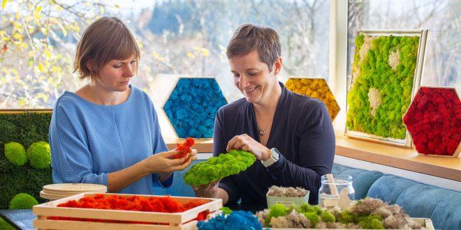 Mooserie: Mondseer Start-up erobert mit Moosbildern die Welt des natürlichen Interior Designs